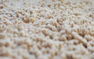 Do Carpet Cleaning Products Work?