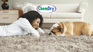 carpet cleaning service in rancho cordova ca