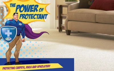 Chem-Dry Protectant
