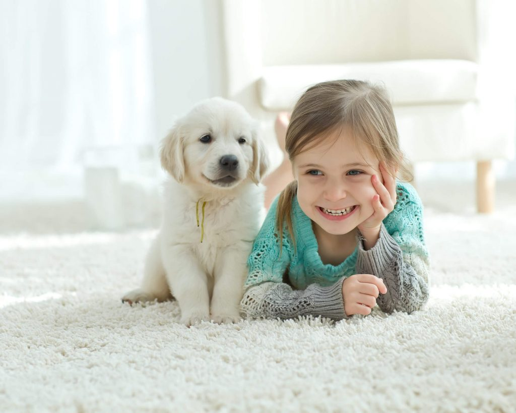 little girl and puppy on a clean carpet in elk grove california