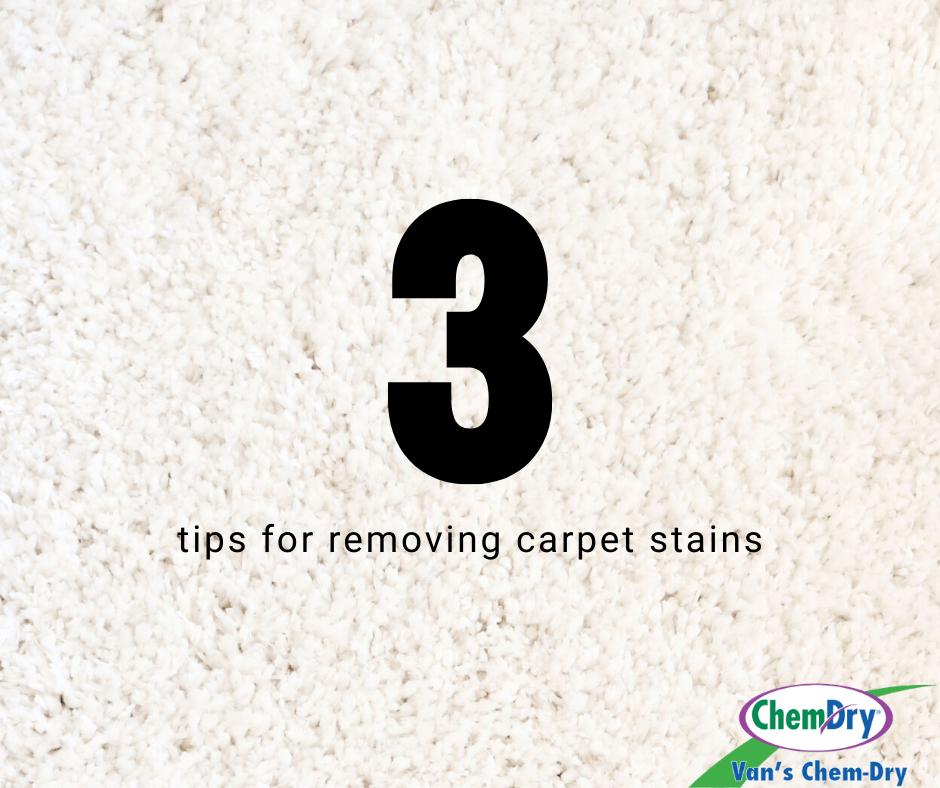 3 tips for removing carpet stains vans chem dry