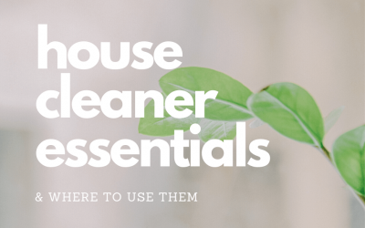 House Cleaner Essentials