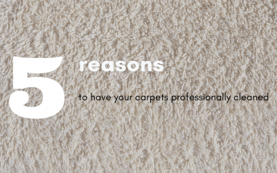 Five Reasons To Have Your Carpets Professionally Cleaned