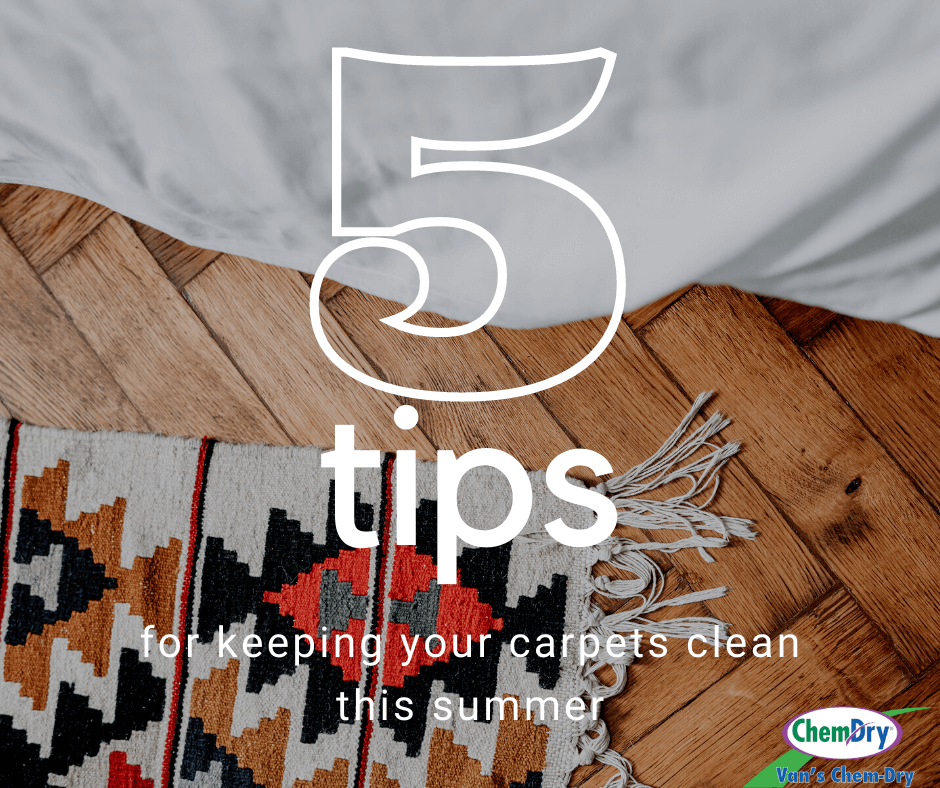 5 tips for keeping your carpets clean this summer vans chem-dry